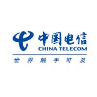 CHINA TELECOM/中国电信
